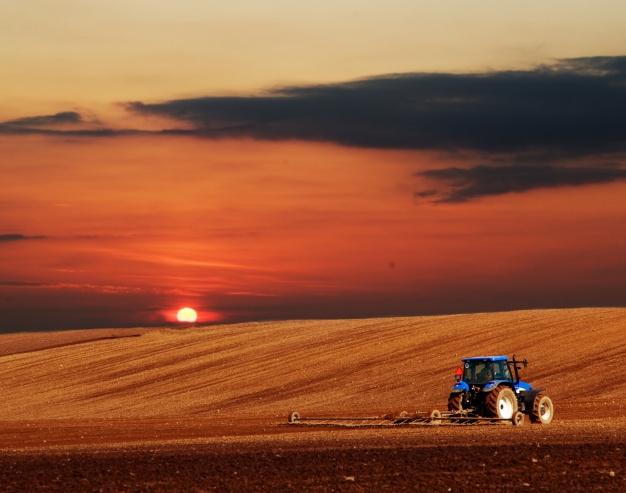 Detajli pri kmetovanju