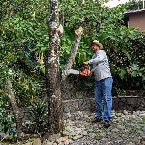 Husqvarna 555 za izjemno zahtevna gozdarska dela